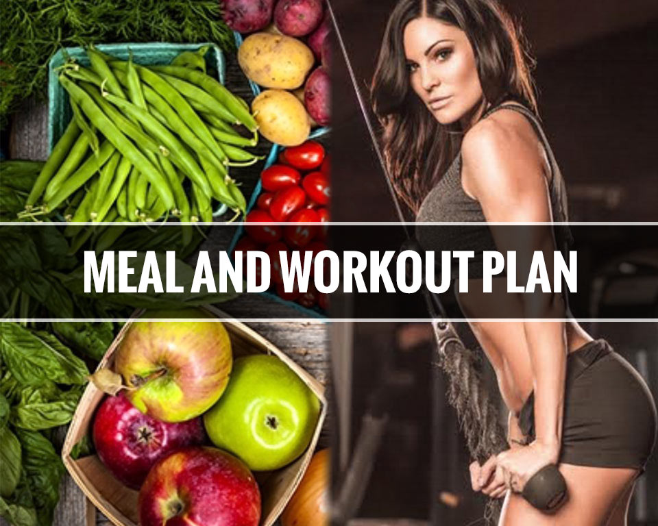 Meal-and-Workout-Plan-Feature-WooCom